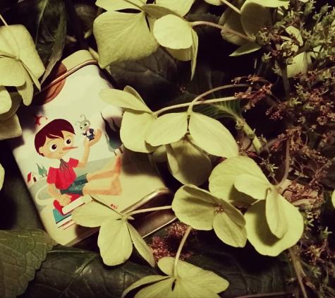 Pinocchio Pastiglie Leone edizione limitata
