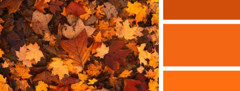designtralerighe autunno arredi arancio
